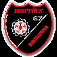 Белшина Бобруйск