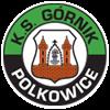 Гурник Польковице