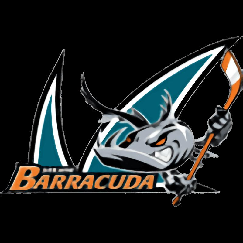 Сан-Хосе Барракуда